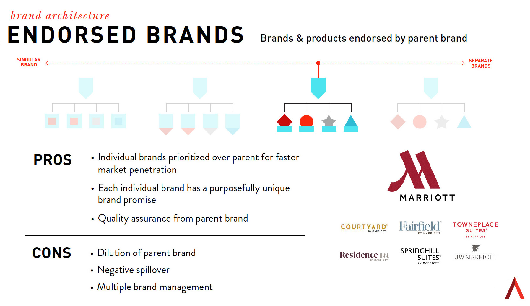 endorsed brands graphic